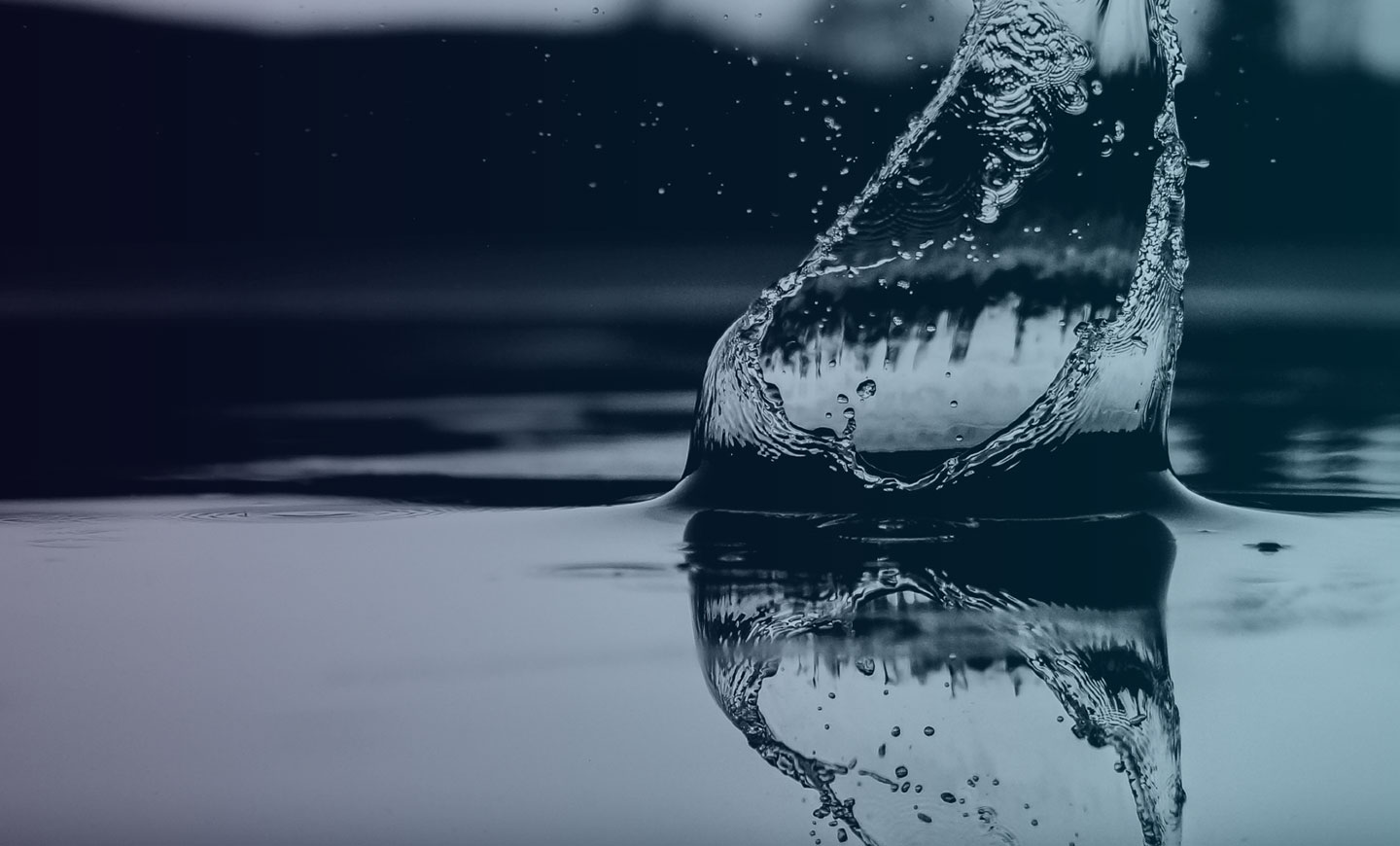 make a splash with a strong brand identity